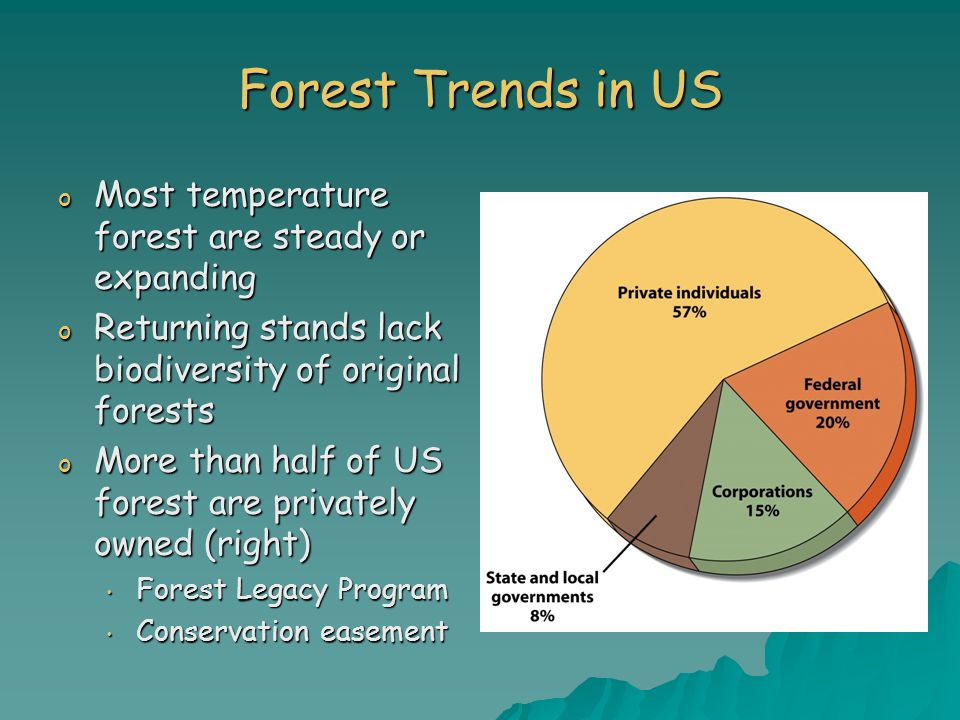 Forest Trends in US Most temperature forest are steady or expanding