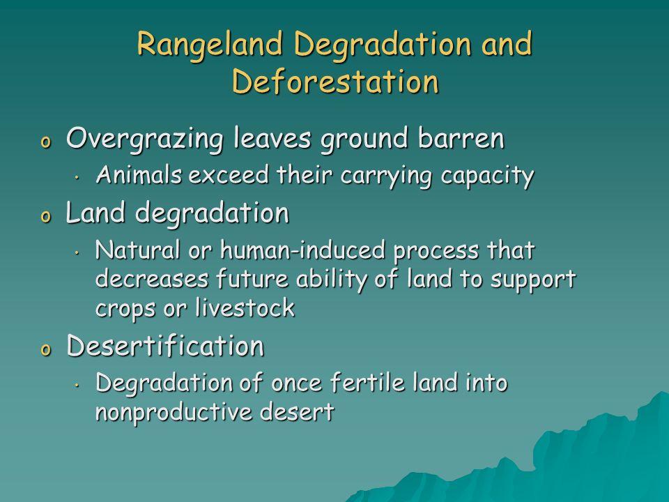 Rangeland Degradation and Deforestation
