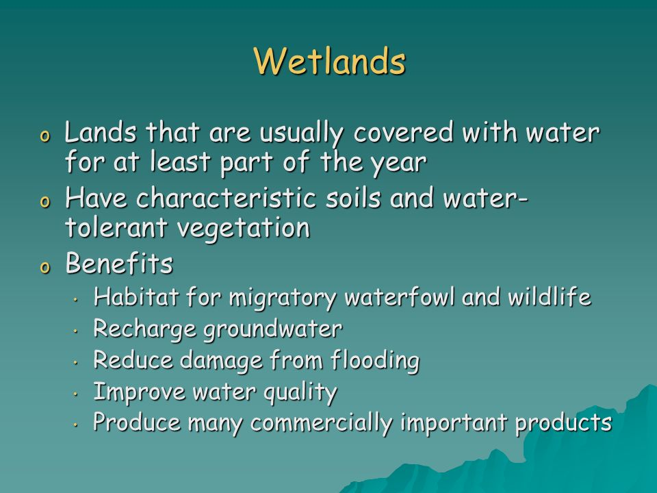 Wetlands Lands that are usually covered with water for at least part of the year. Have characteristic soils and water-tolerant vegetation.