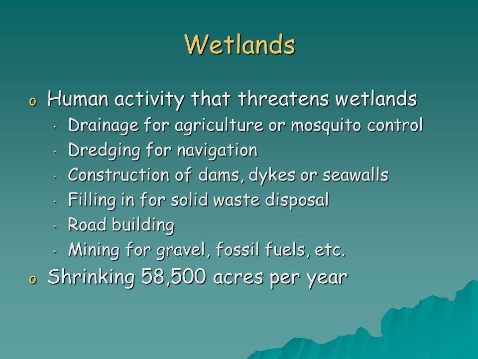 Wetlands Human activity that threatens wetlands