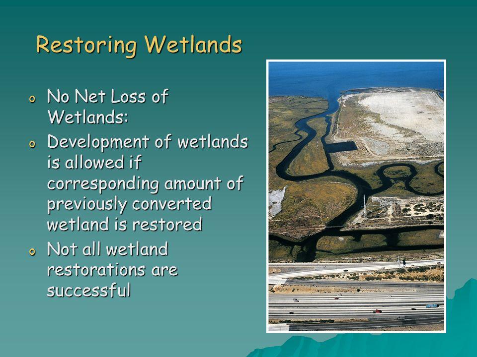 Restoring Wetlands No Net Loss of Wetlands: