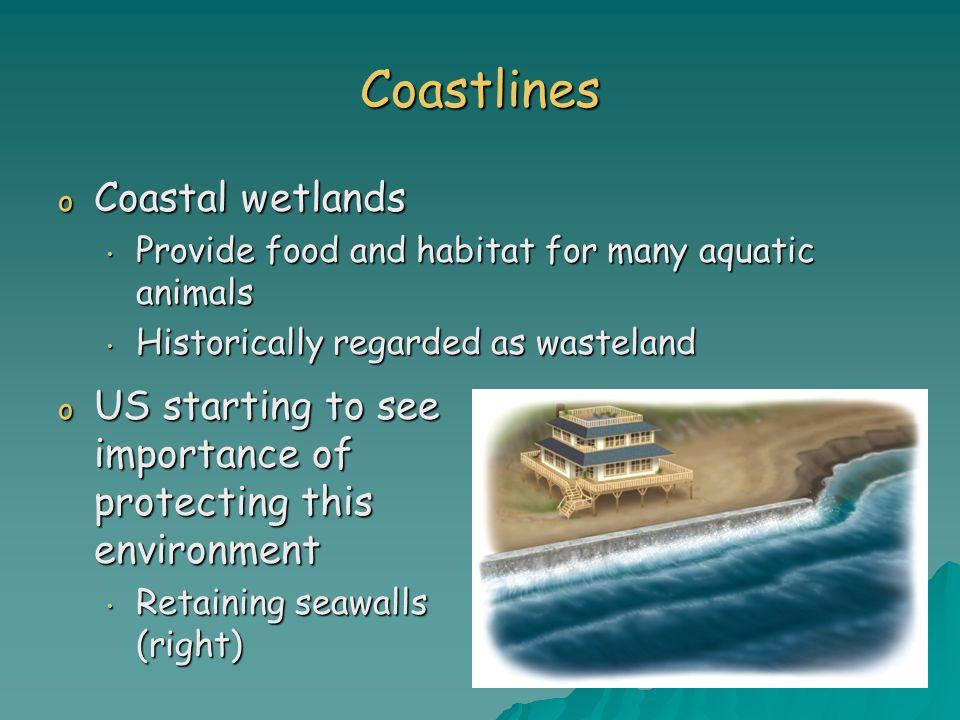 Coastlines Coastal wetlands