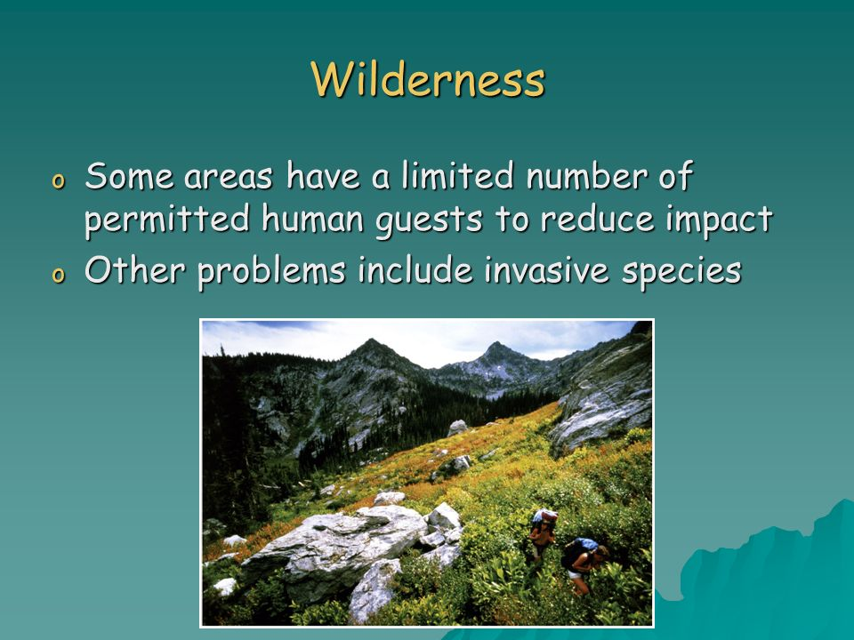 Wilderness Some areas have a limited number of permitted human guests to reduce impact.
