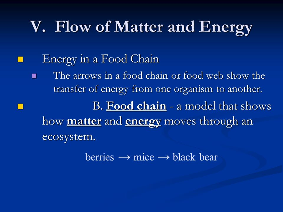 V. Flow of Matter and Energy