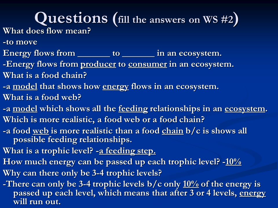 Questions (fill the answers on WS #2)