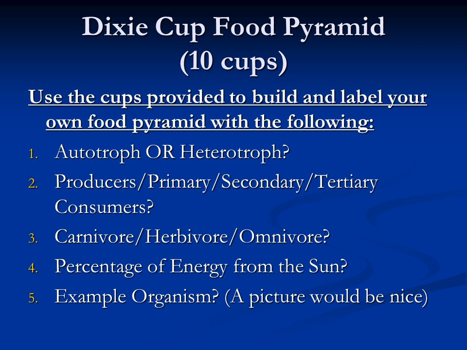 Dixie Cup Food Pyramid (10 cups)