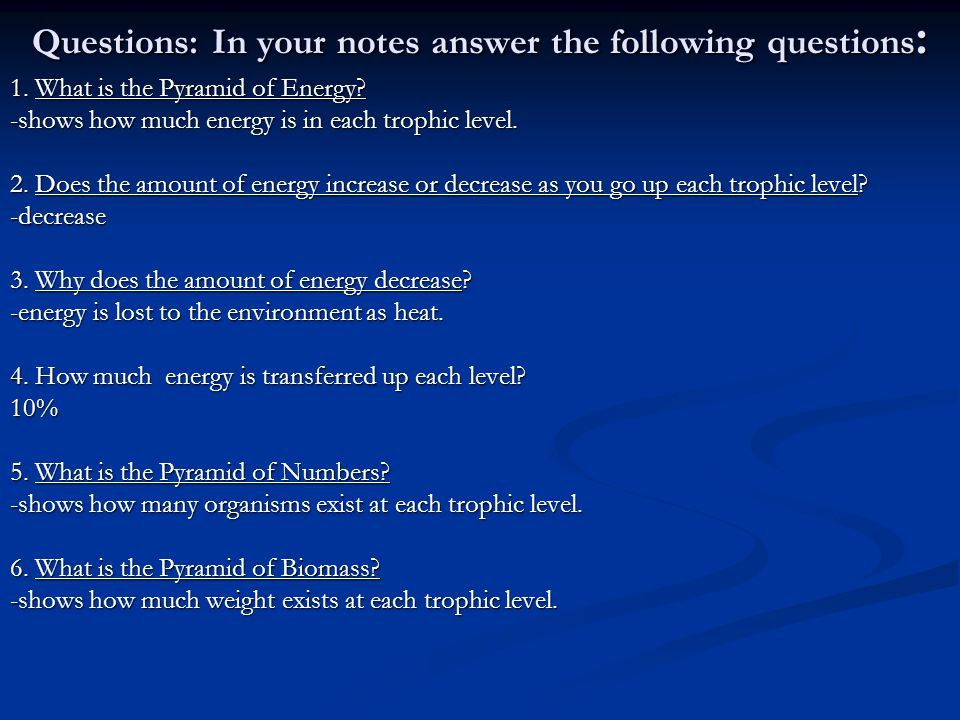 Questions: In your notes answer the following questions: