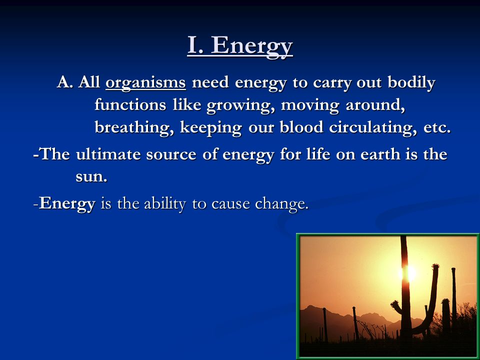 I. Energy A. All organisms need energy to carry out bodily functions like growing, moving around, breathing, keeping our blood circulating, etc.