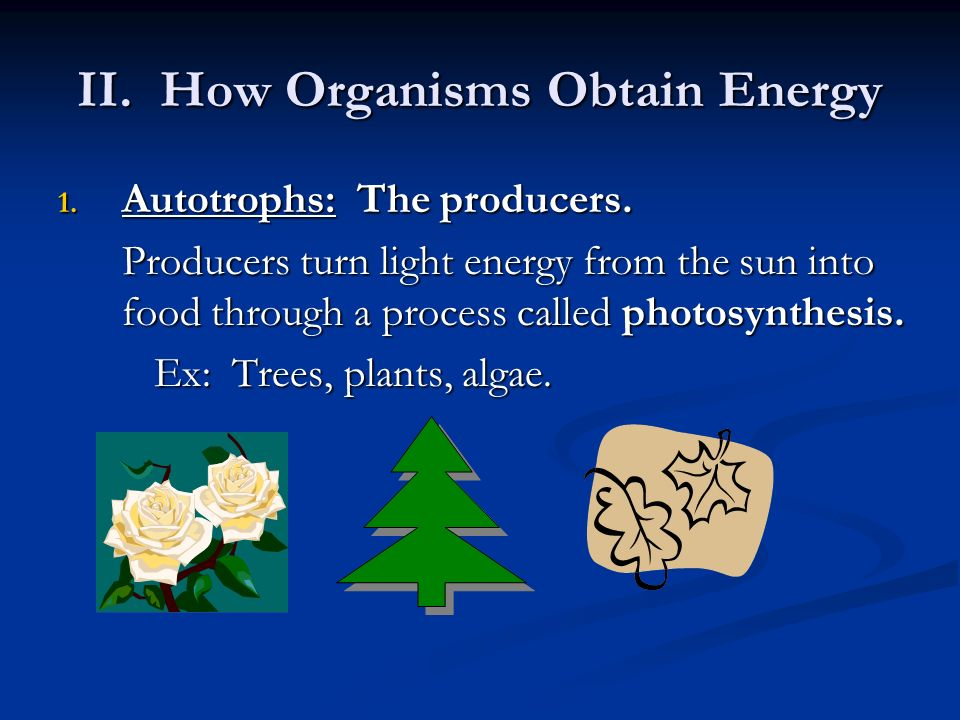 II. How Organisms Obtain Energy