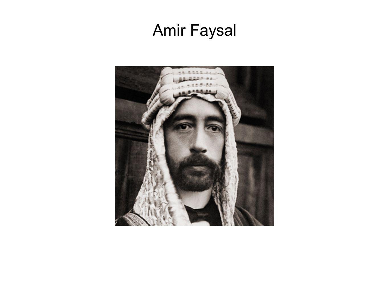 Amir Faysal