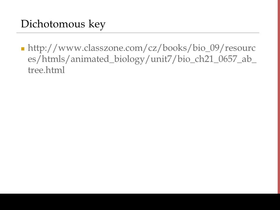 Dichotomous key http://www.classzone.com/cz/books/bio_09/resources/htmls/animated_biology/unit7/bio_ch21_0657_ab_tree.html.