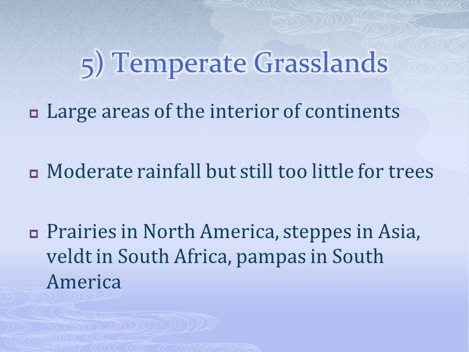 5) Temperate Grasslands