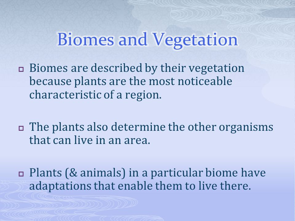 Biomes and Vegetation Biomes are described by their vegetation because plants are the most noticeable characteristic of a region.