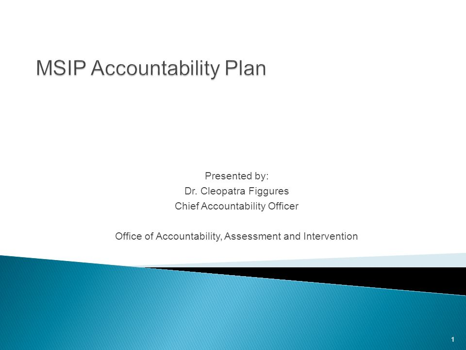 MSIP Accountability Plan