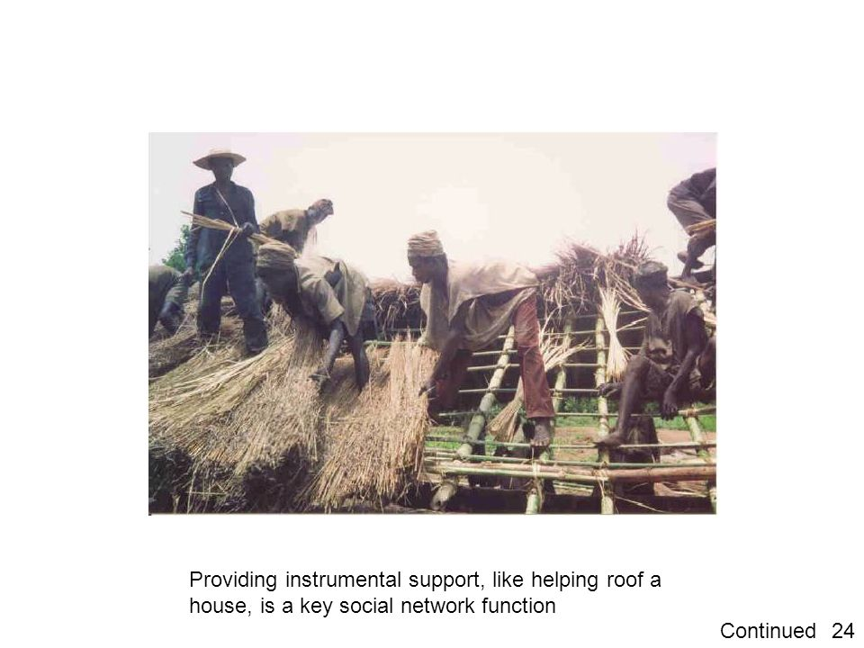 Providing instrumental support, like helping roof a