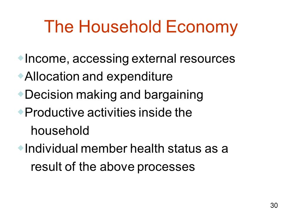 The Household Economy ◆Income, accessing external resources