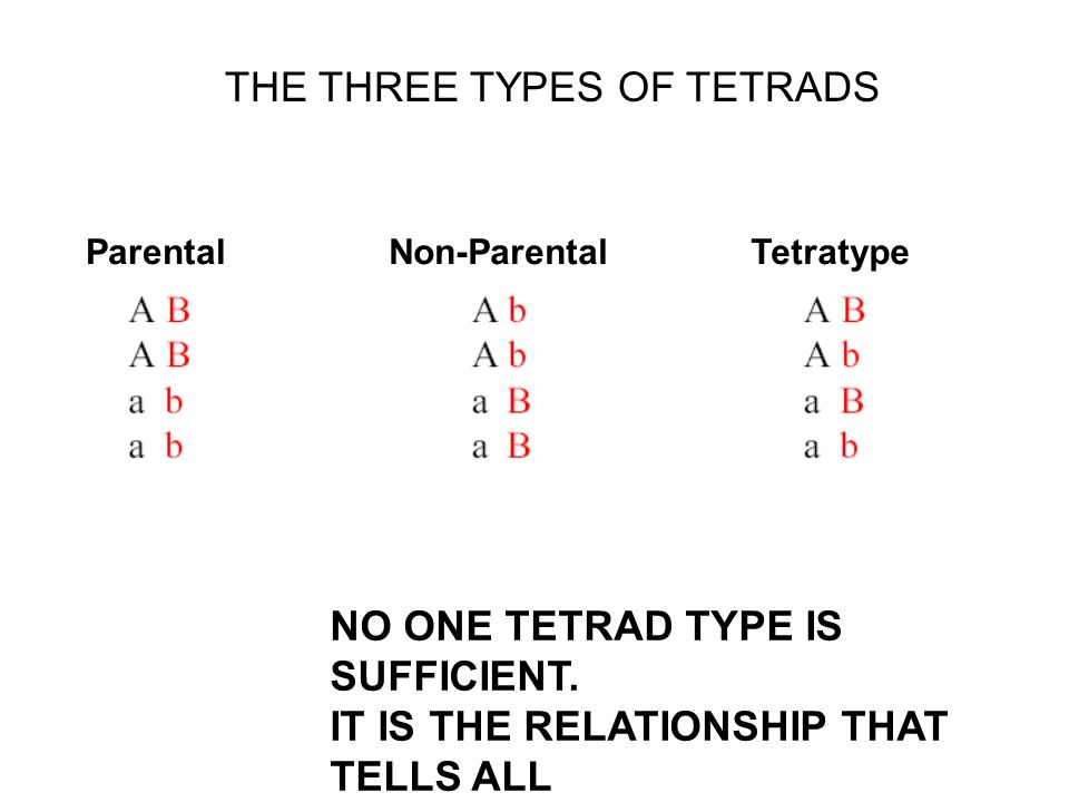 THE THREE TYPES OF TETRADS