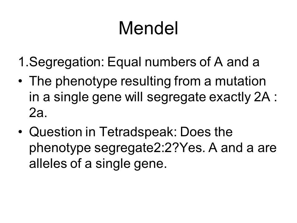 Mendel 1.Segregation: Equal numbers of A and a