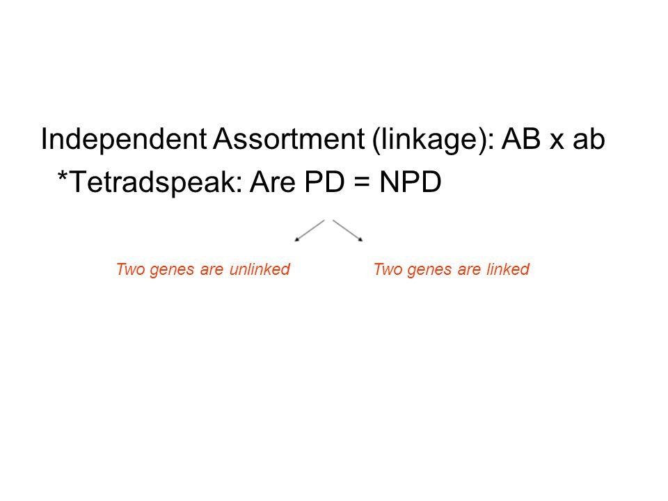 Independent Assortment (linkage): AB x ab *Tetradspeak: Are PD = NPD