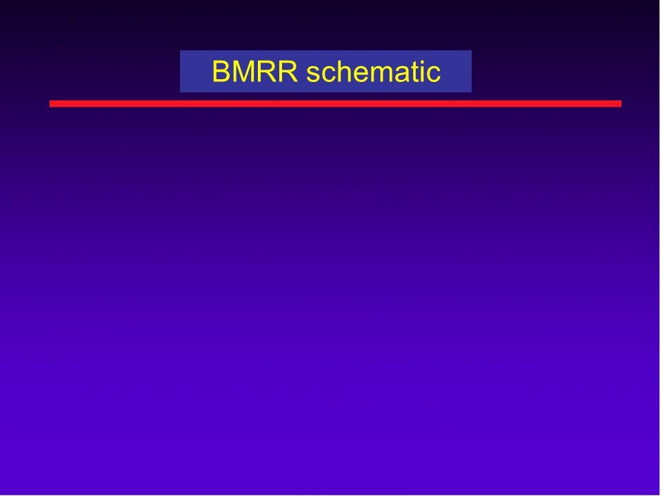 BMRR schematic