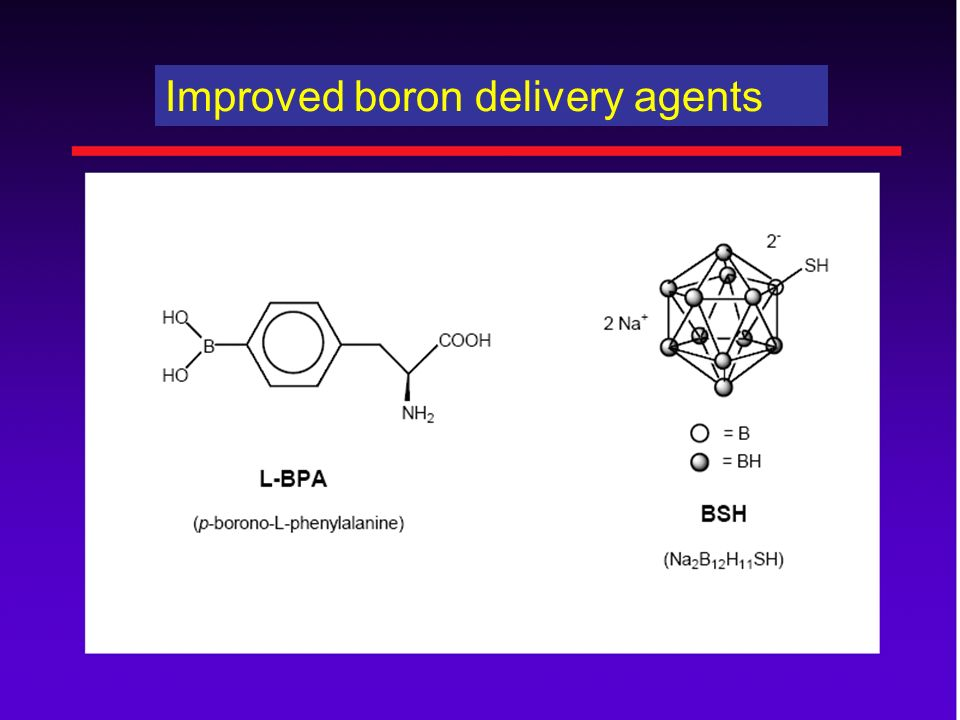Improved boron delivery agents