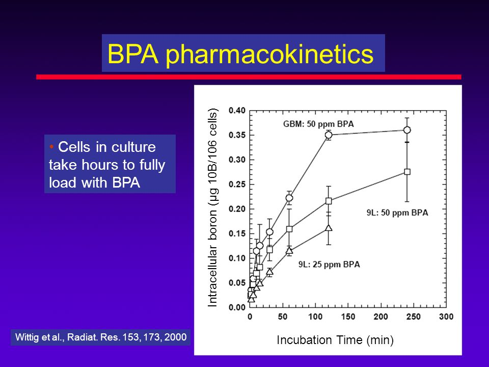 BPA pharmacokinetics • Cells in culture take hours to fully