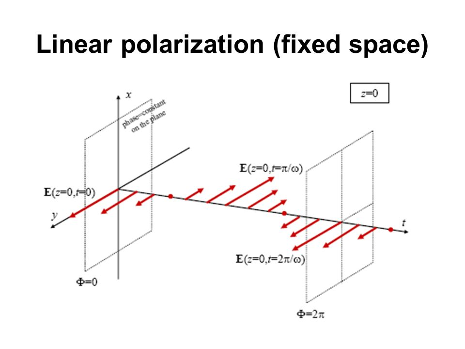 Linear polarization (fixed space)
