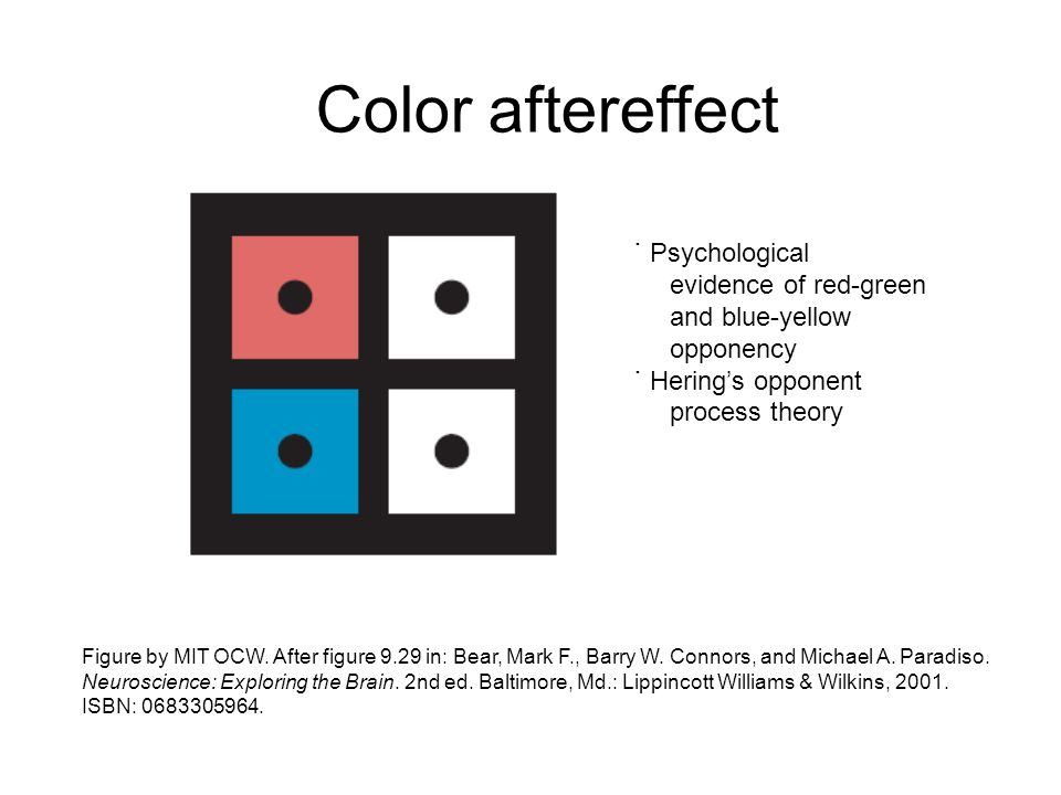 Color aftereffect ˙ Psychological evidence of red-green