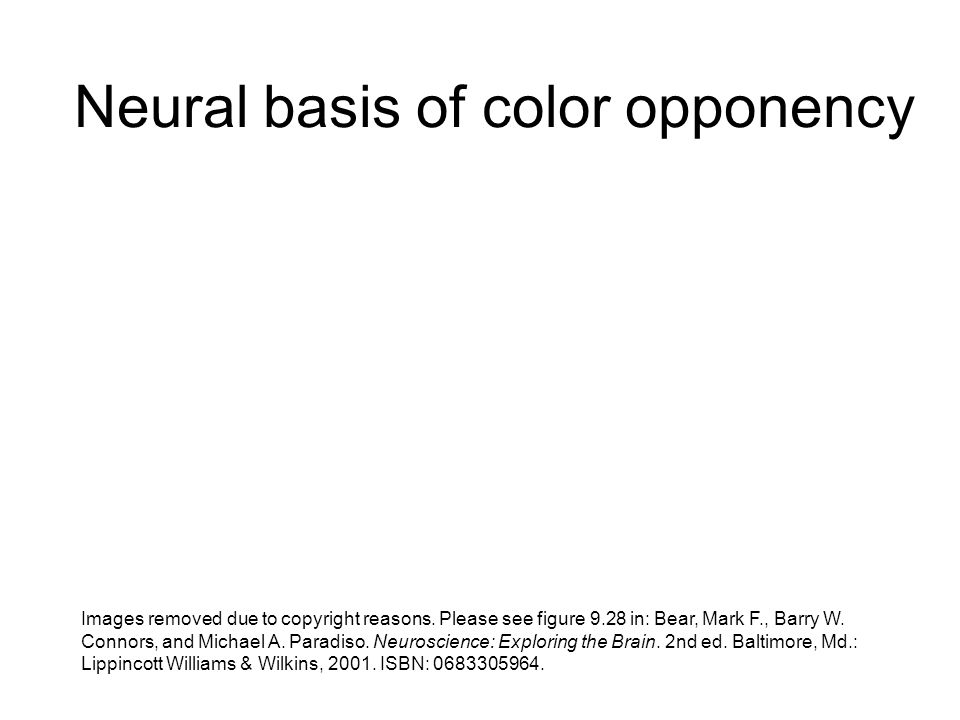 Neural basis of color opponency