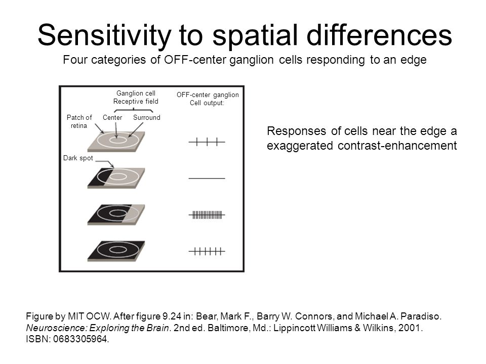 Sensitivity to spatial differences