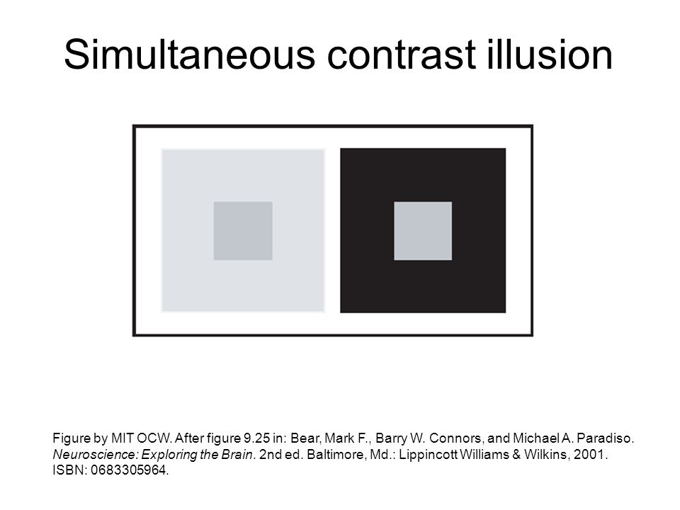 Simultaneous contrast illusion