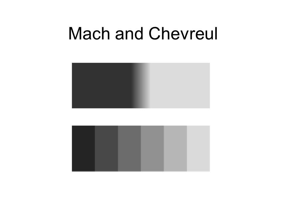 Mach and Chevreul