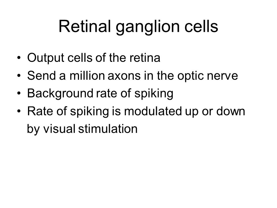 Retinal ganglion cells