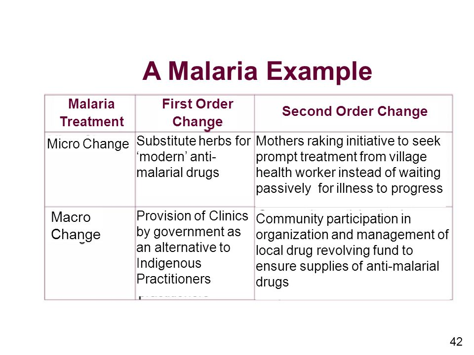 A Malaria Example Macro Change First Order Change Second Order Change