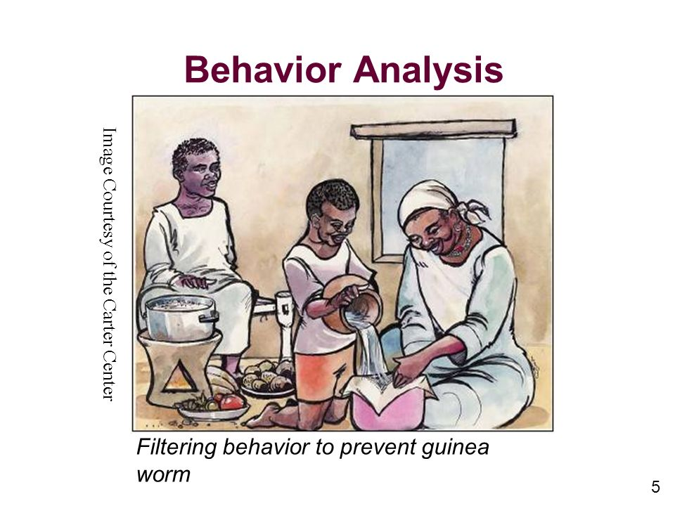 Behavior Analysis Filtering behavior to prevent guinea worm