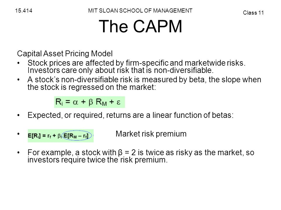 The CAPM Capital Asset Pricing Model
