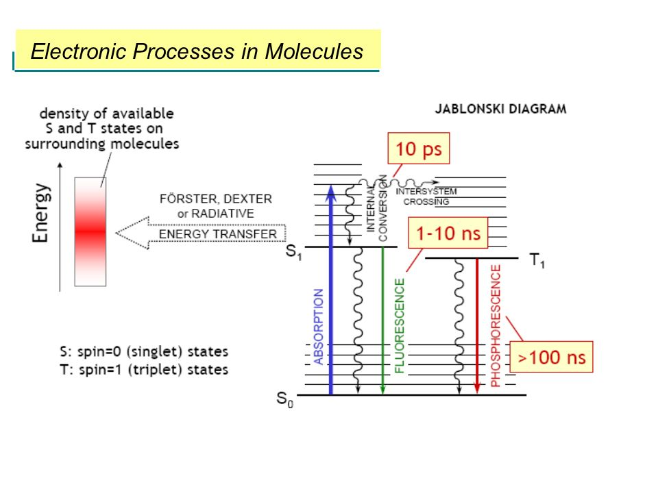 Electronic Processes in Molecules