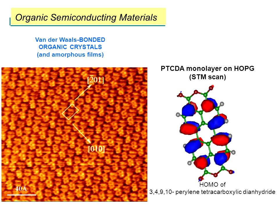 PTCDA monolayer on HOPG