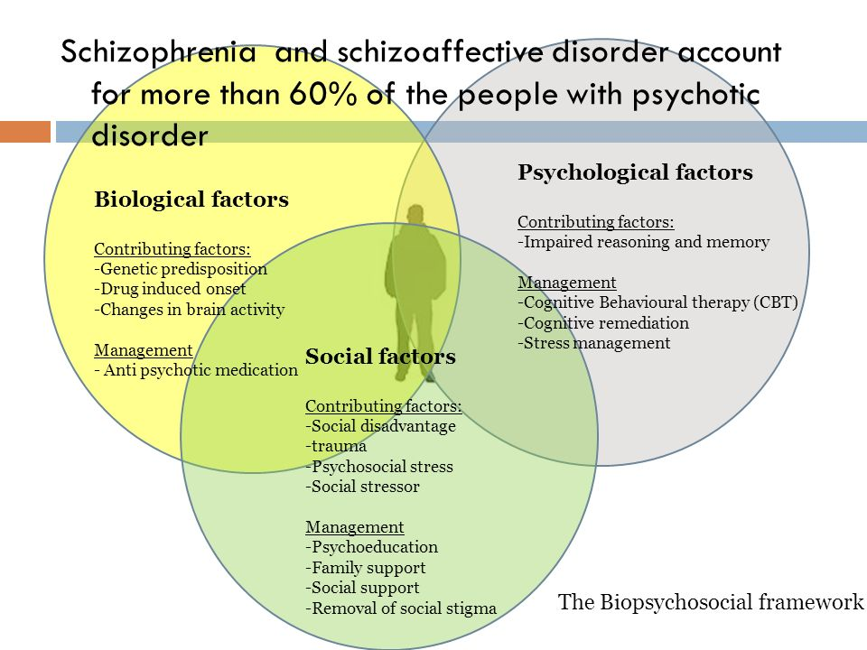 factors that contribute to the development of schizophrenia Researchers have not determined a single cause for the development of  schizophrenia,.