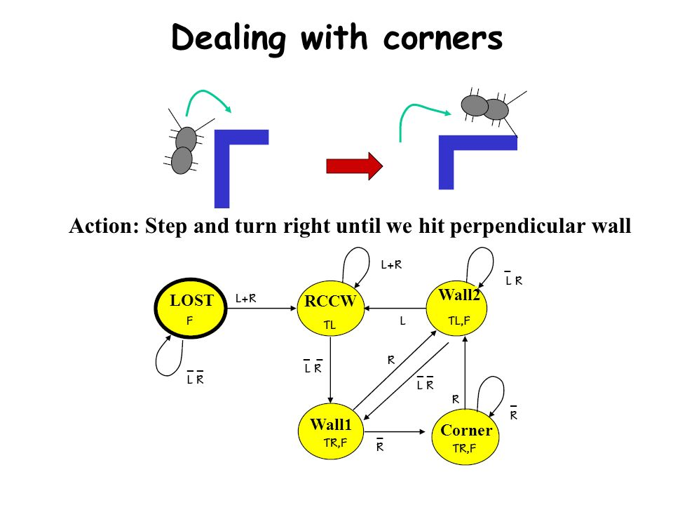 Dealing with corners Action: Step and turn right until we hit perpendicular wall. Wall2. LOST. RCCW.