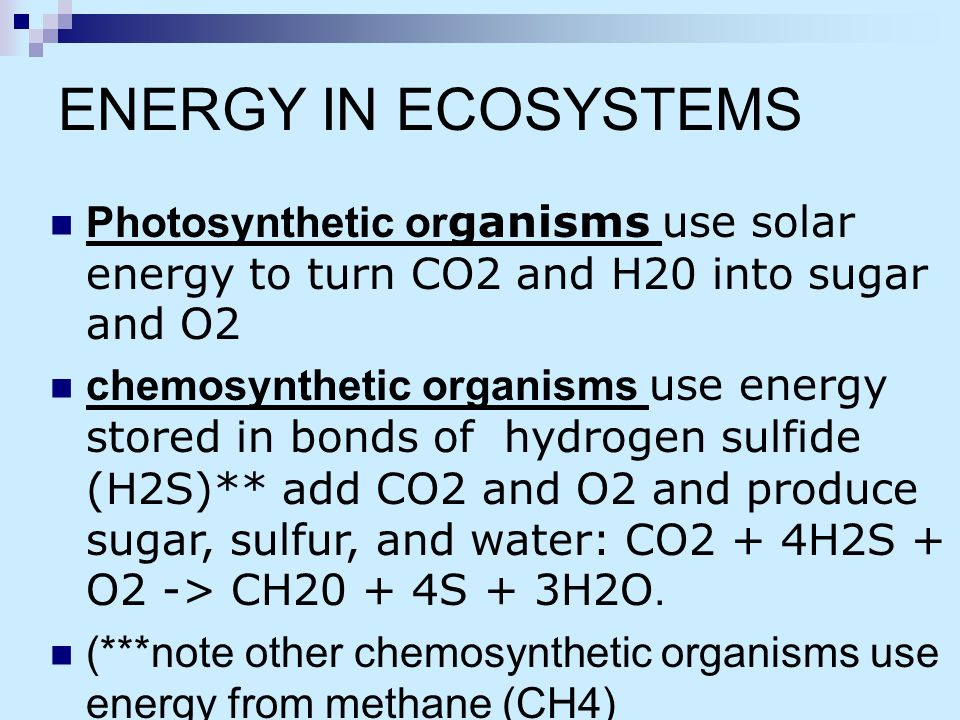 using h2s in photosythesis Other bacteria can be considered photosynthesizing organisms, but they follow a different process known as bacterial photosynthesis, or anoxygenic photosynthesis 14 this process uses bacteriochlorophyll instead of chlorophyll a 19 these bacteria cells use carbon dioxide and hydrogen sulfide (instead.