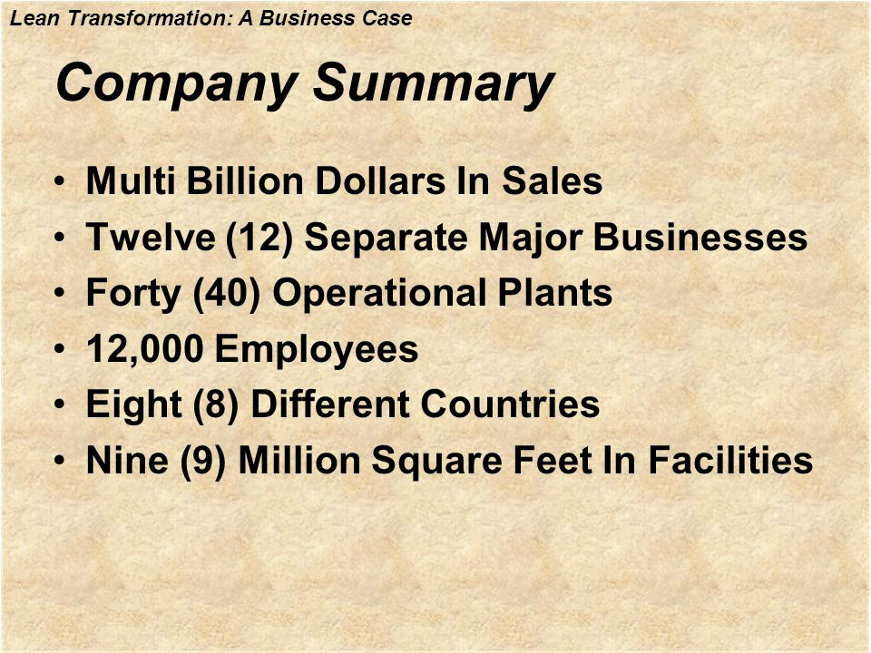 Company Summary Multi Billion Dollars In Sales