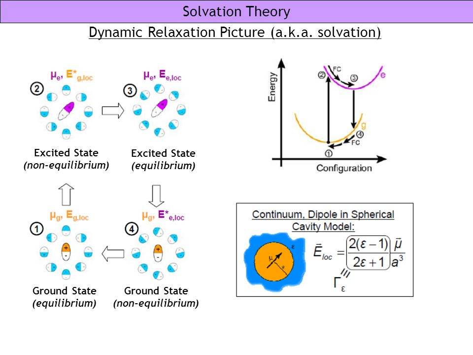Dynamic Relaxation Picture (a.k.a. solvation)