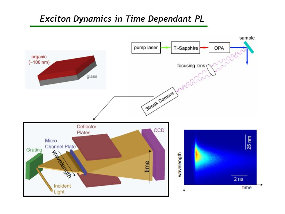 Exciton Dynamics in Time Dependant PL