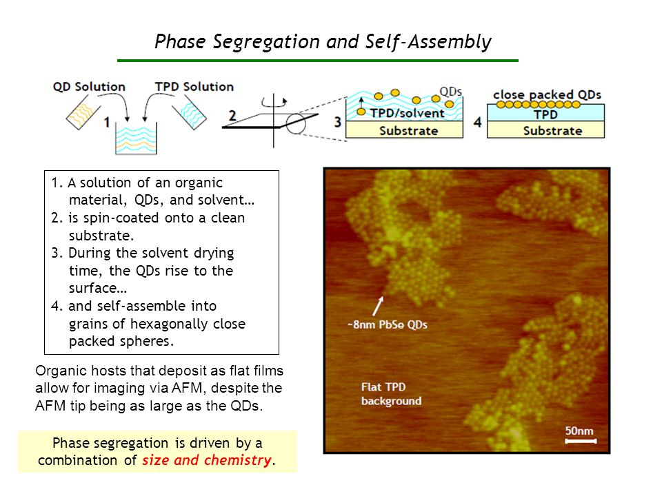 Phase Segregation and Self-Assembly