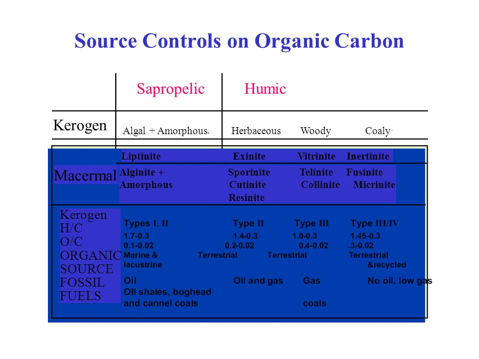 Source Controls on Organic Carbon