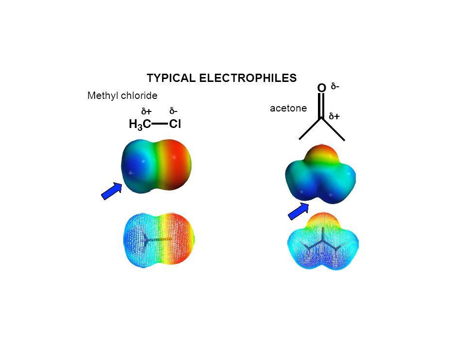 TYPICAL ELECTROPHILES