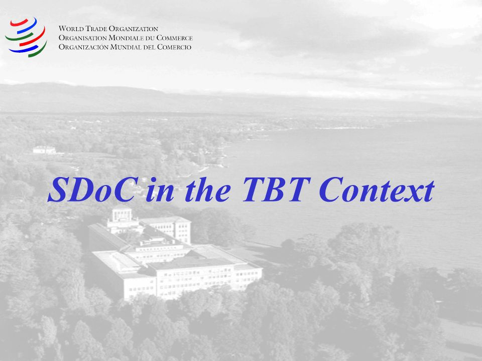 SDoC in the TBT Context
