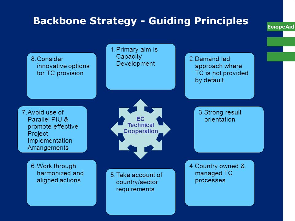 Backbone Strategy - Guiding Principles