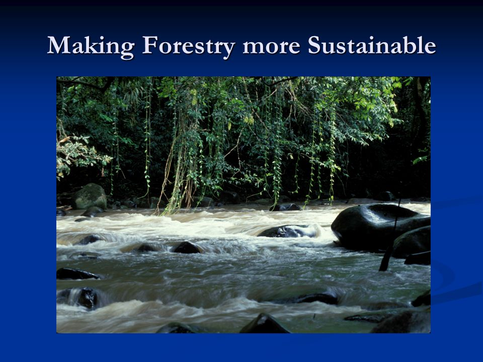 Making Forestry more Sustainable